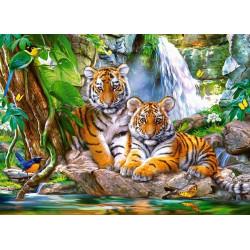 030385. Puzzle 300 Tiger Falls