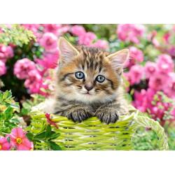 111039. Puzzle 100 Kitten in Flower Garden