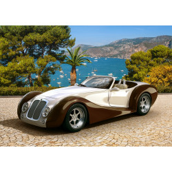 53094. Puzzle 500 Roadster in Riviera