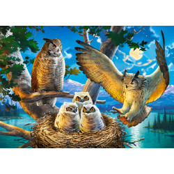 53322. Puzzle 500 Owl Family