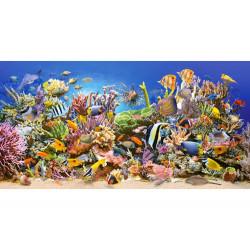 Puzzle 4000 Underwater life 400089